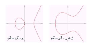 Examples of elliptic curves. Image: Chas zzz brown, via Wikimedia Commons.